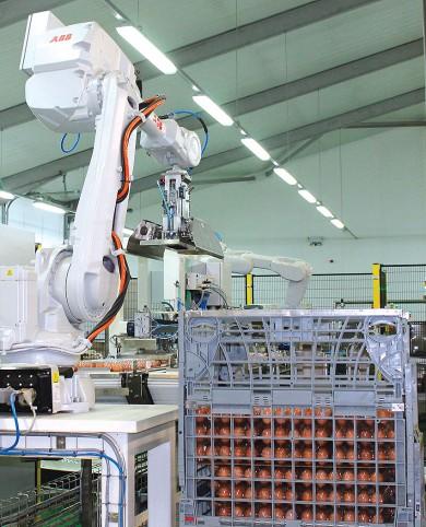 Robotické balení vajec