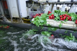 Potravinářský a nápojový průmysl čelí vodohospodářským výzvám